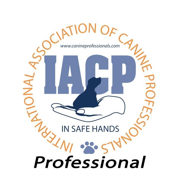 IACP logos